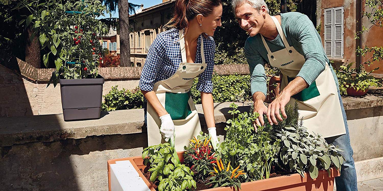 Sostegni Per Pomodori In Vaso 6 modelli di struttura per orto verticale per ogni esigenza