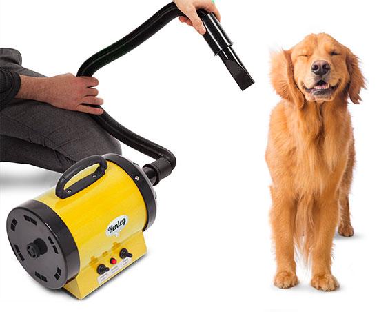 Soffiatore-per-cani-2